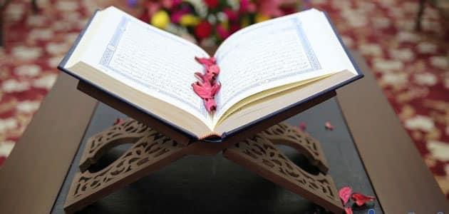 تفسير رؤية تجويد القرآن وتفسيره في المنام