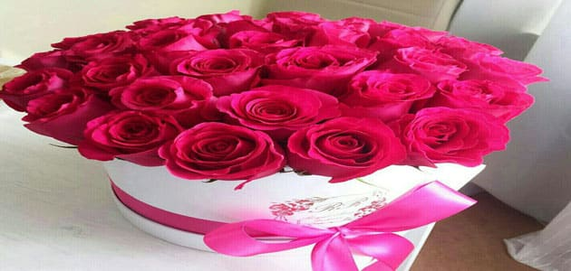 تفسير رؤية مزهرية الورد في المنام