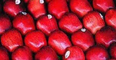فوائد التفاح الاحمر وتناوله على الريق للاطفال
