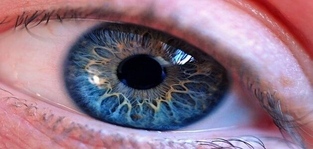 أضرار الأشعة فوق البنفسجية على العين