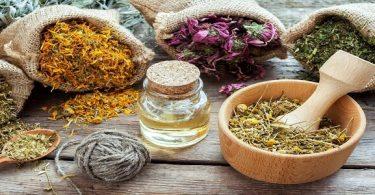 علاج التبول اللاإرادي عند الكبار بالاعشاب الطبيعية