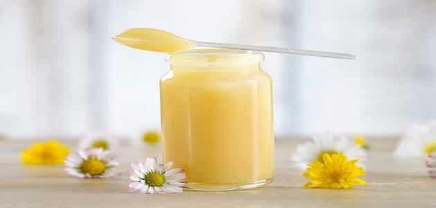 فوائد غذاء ملكات النحل للحمل وطريقة الاستخدام