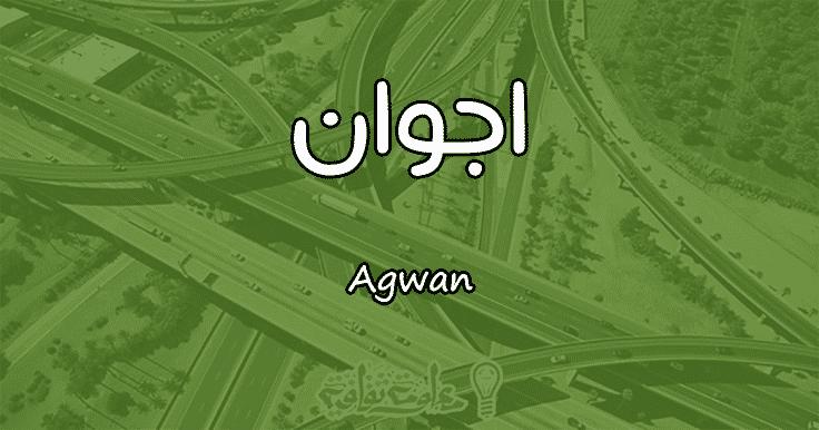 معنى اسم اجوان Agwan وأسرار شخصيتها وصفاتها