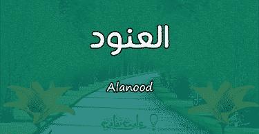 معنى اسم العنود Alanood وشخصيتها حسب علم النفس