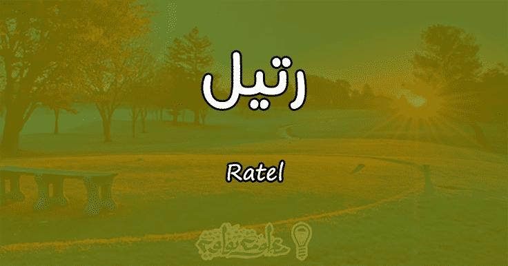 معنى اسم رتيل Ratel وصفات حاملة الاسم | معلومة ثقافية