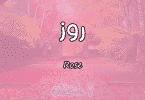 معنى اسم روز Rose وصفات حاملة الاسم