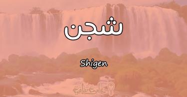 معنى اسم شجن Shigen وصفات حاملة الاسم