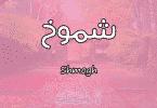 معنى اسم شموخ Shmogh وصفات حاملة الاسم