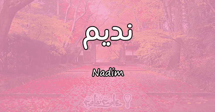 معنى اسم نديم Nadim وأسرار شخصيته وصفاته | معلومة ثقافية