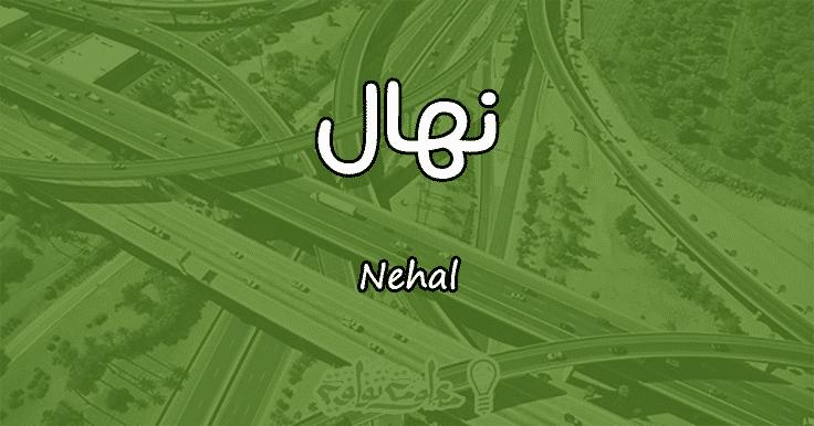 معنى اسم نهال Nehal وصفات حاملة الاسم
