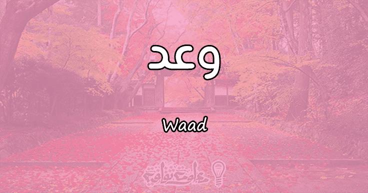 معنى اسم وعد Waad وأسرار شخصيتها وصفاتها