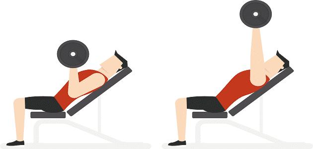 موضوع تعبير عن الرياضة البدنية بالعناصر