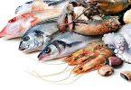 6 فوائد مختلفة عند اكل سمك الانوم للرجال
