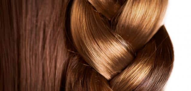 7 وصفات لعمل بروتين الشعر الطبيعي لتطويل وتنعيم الشعر