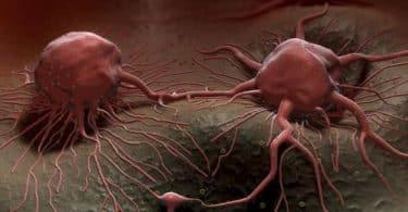 علاج مرض السرطان نهائيا باستخدام اقراص فيمارا