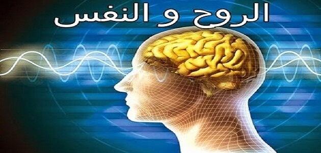فرق بين الروح والنفس علميا وفى الاسلام