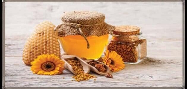 فوائد تناول عسل الطلح على الريق للرجال