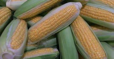 فوائد تناول هريسة الذرة لتخسيس 10 كيلو أسبوعيًا
