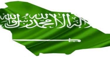 ما هو عدد سكان المملكة العربية السعودية ومعدل نموها سنويا