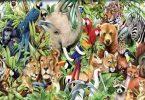 معلومات هل تعلم عن الحيوانات