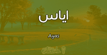 معنى اسم اياس Ayas وصفات حاملة الاسم
