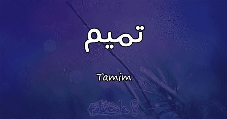 معنى اسم تميم Tamim وصفات حاملة الاسم