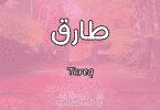 معنى اسم طارق Tareq وصفات حامل الاسم