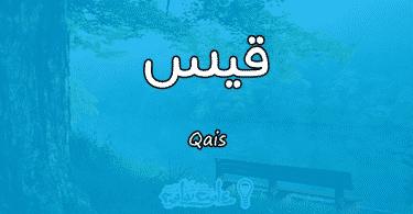 معنى اسم قيس Qais وأسرار شخصيته وصفاته