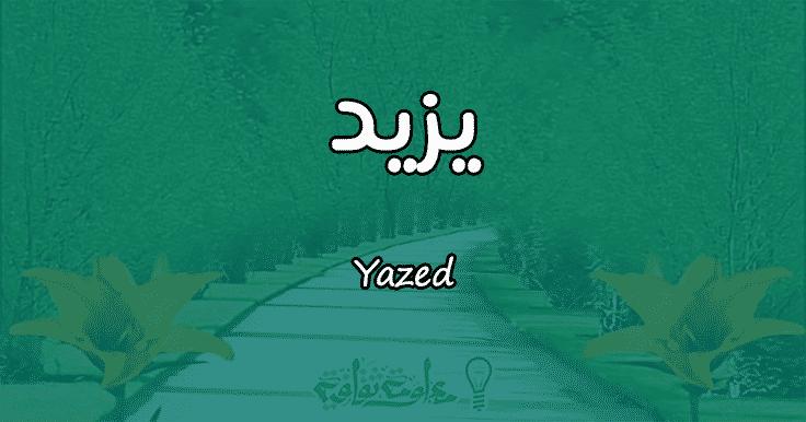 معنى اسم يزيد Yazed وأسرار شخصيته وصفاته