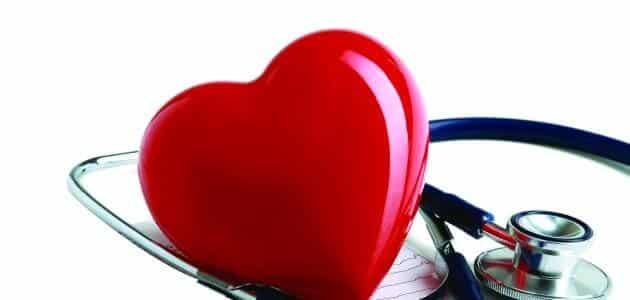 هل الإيكو يكشف أمراض عضلة القلب الضعيفة