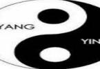 ما هي نظرية الين واليانغ بالتفصيل