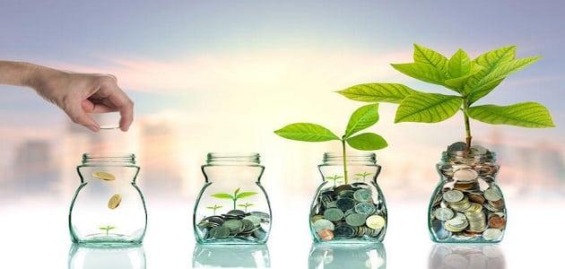 أفضل طريقة لتأهيل الفرد ليصبح مستثمرًا عالميًا