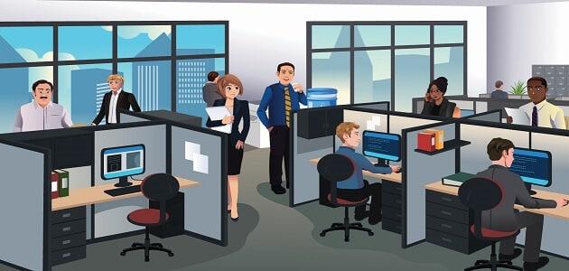 التخصصات الأكثر طلبًا في سوق العمل