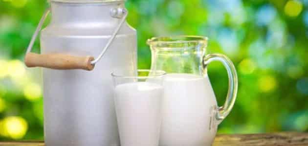 تفسير الحليب في المنام للعزباء معلومة ثقافية