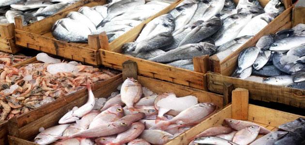 تفسير رؤية السمك في المنام أكل شراء طبخ صيد معلومة ثقافية