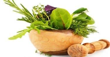 علاج التهاب اللثة وآلام الأسنان بالأعشاب الطبيعية