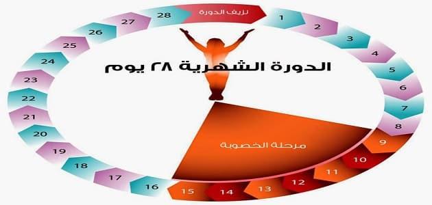 e7033a849 متى يحدث الحمل بعد الدورة بكم يوم | معلومة ثقافية
