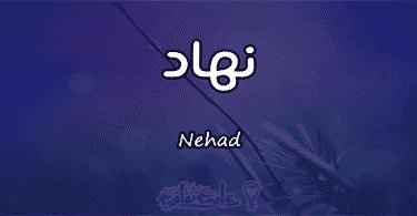 معنى اسم نهاد Nehad وصفات حاملة الاسم