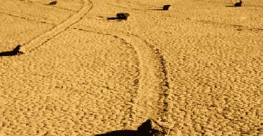 معلومات مرعبة عن الصخور المتحركة في وادي الموت