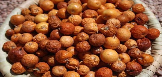 تفسير رؤية أكل النبق في المنام ومعناه معلومة ثقافية