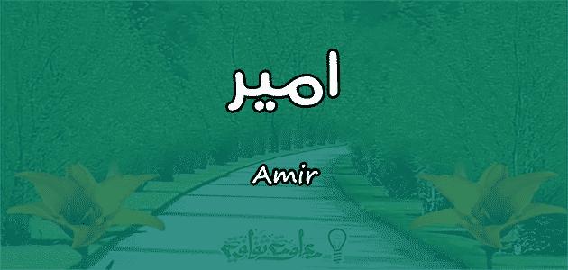 معنى اسم امير Amir في علم النفس