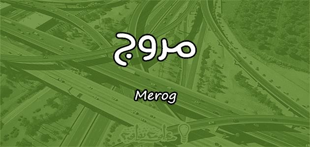 معنى اسم مروج Merog حسب علم النفس