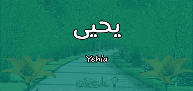 معنى اسم يحيى Yehia وأسرار شخصيته وصفاته معلومة ثقافية