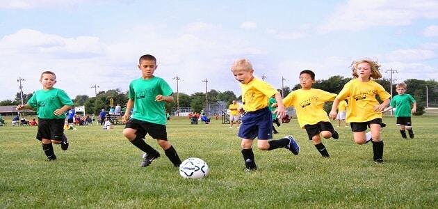 مفهوم الرياضة الجماعية والفردية
