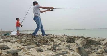 أهم موانئ الصيد البحري بالبلاد التونسية