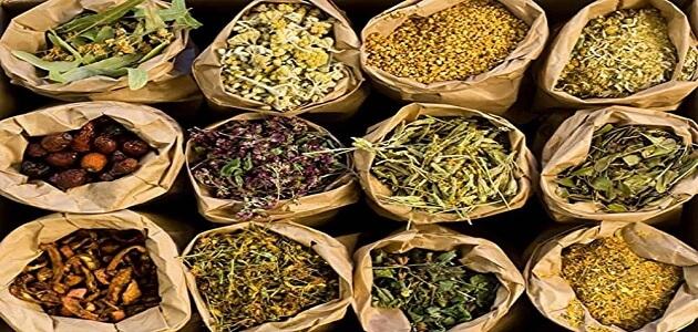 اعشاب طبيعية لزيادة الوزن في اسبوع