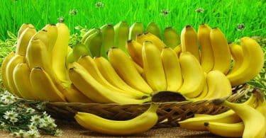 الموز في المنام