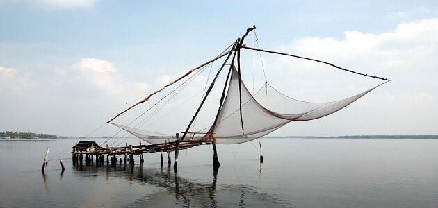 انواع الصيد البحري في العالم