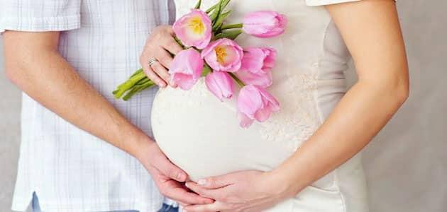 تفسیر حلم الحمل