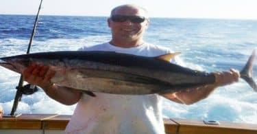 صيد سمك التونة في مصر